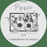 winner videography festival